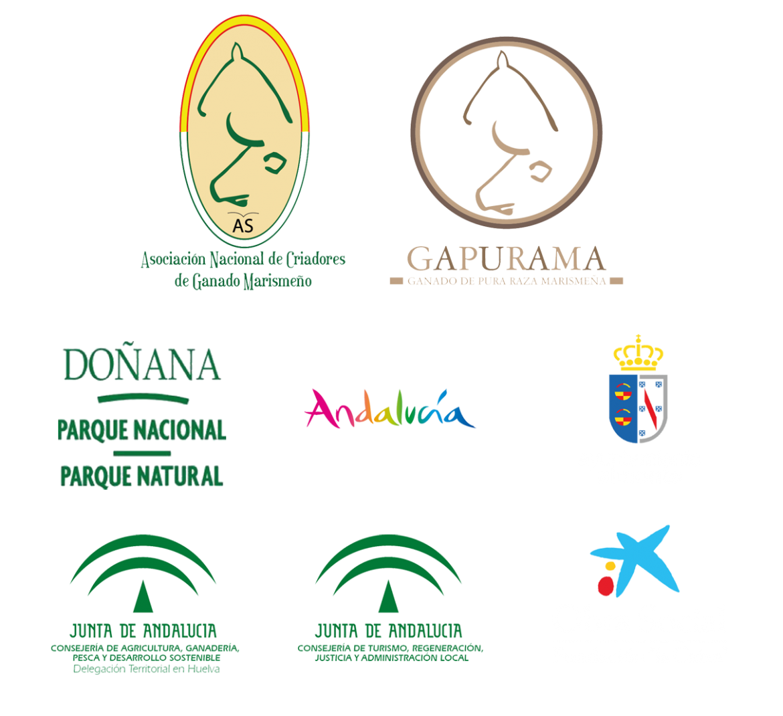 logos-web-1.png